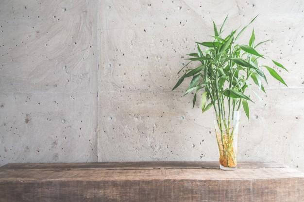bambus møbler
