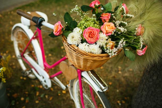 cykelkurve