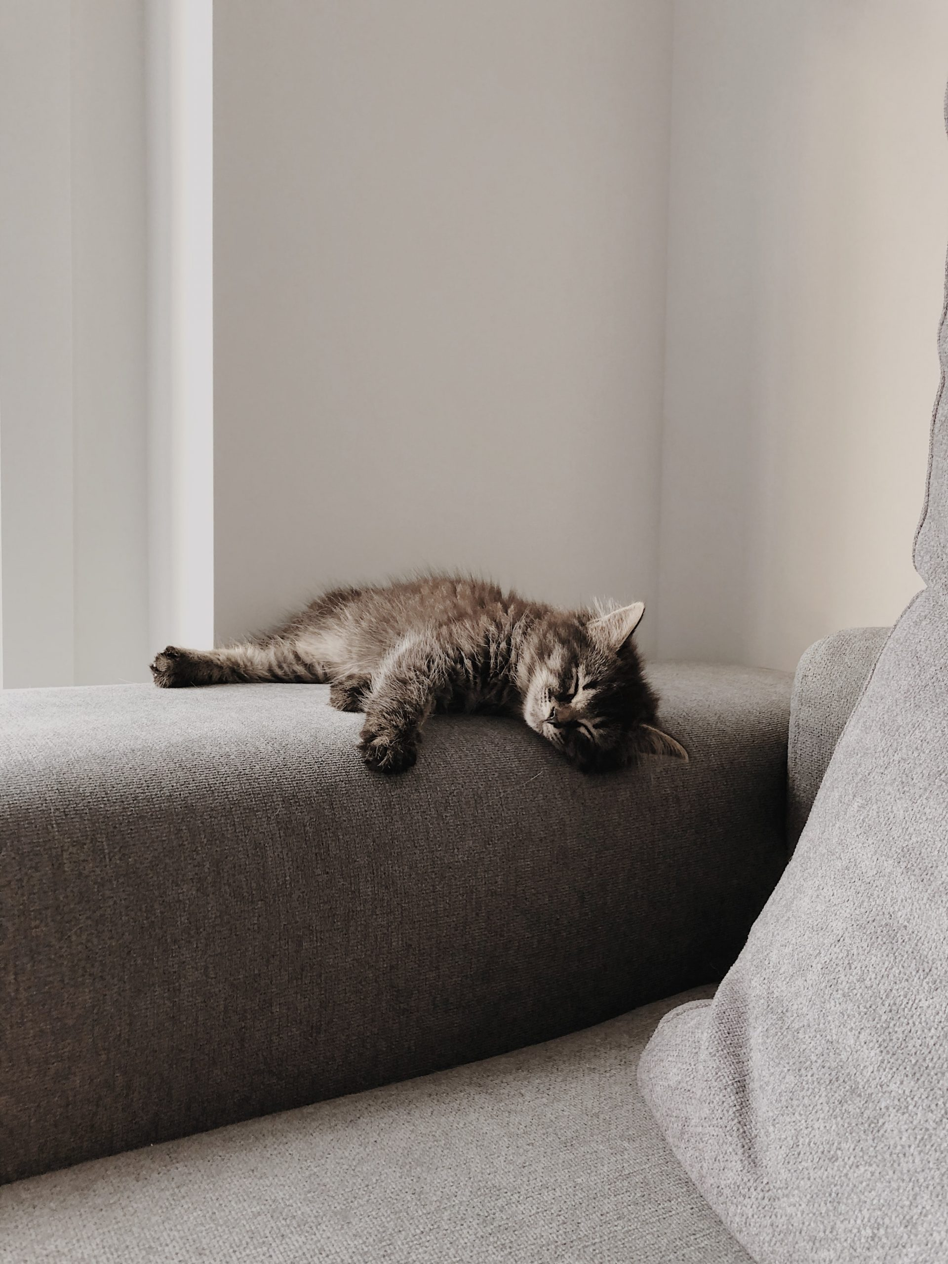 Sovesofa, futon, køb sovesofa